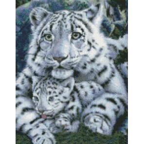 Нежная хищница Алмазная вышивка мозаика с рамкой Цветной