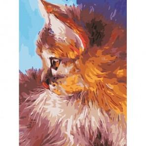 Котёнок - Рыжик Раскраска картина по номерам акриловыми красками Color Kit