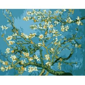 Миндаль. Ван Гог Раскраска картина по номерам акриловыми красками на холсте Molly