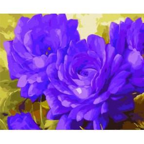 Лиловые цветы Раскраска картина по номерам акриловыми красками на холсте Menglei