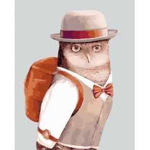 Филин турист Раскраска по номерам акриловыми красками на холсте Menglei