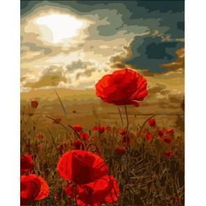 Маки на фоне заката Раскраска картина по номерам акриловыми красками на холсте Menglei