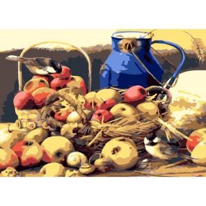 Натюрморт с птичками Раскраска картина по номерам акриловыми красками на холсте Menglei