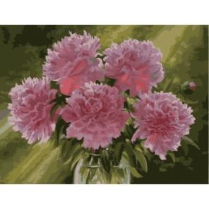 Розовые пионы в вазе Раскраска картина по номерам акриловыми красками на холсте Menglei