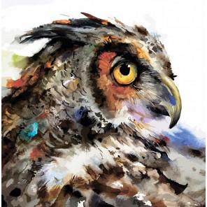 Мудрая сова Раскраска картина по номерам акриловыми красками Color Kit