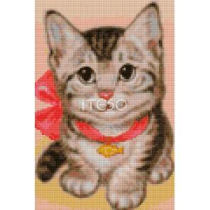 Котёнок Алмазная мозаика на твердой основе Iteso | Купить алмазную мозаику