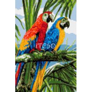 Райские птички Алмазная мозаика на твердой основе Iteso