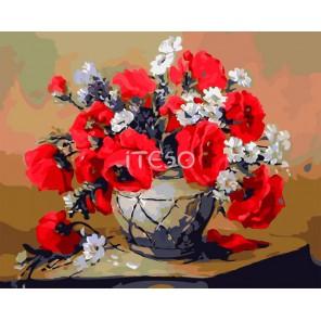 Чарующие маки Раскраска картина по номерам акриловыми красками на холсте Iteso | Картину по номерам купить