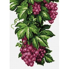 Кисти винограда Алмазная мозаика вышивка Гранни | Алмазная мозаика купить