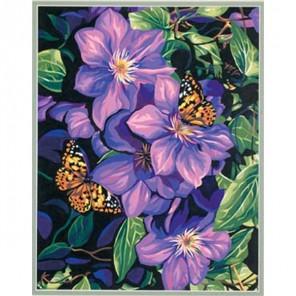 Клематисы и бабочки 91403 Раскраска по номерам акриловыми красками Dimensions