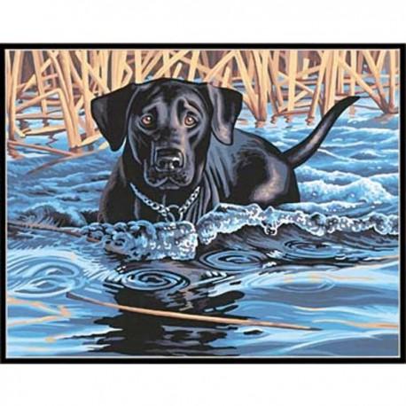 Холодная вода - горячее сердце 91210 Раскраска по номерам Dimensions