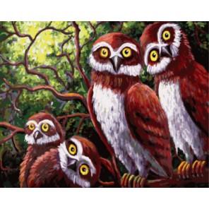 Любопытство Раскраска картина по номерам акриловыми красками на холсте