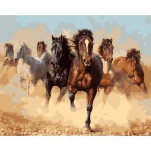 Степной ветер Раскраска картина по номерам акриловыми красками на холсте | Картина по номерам купить