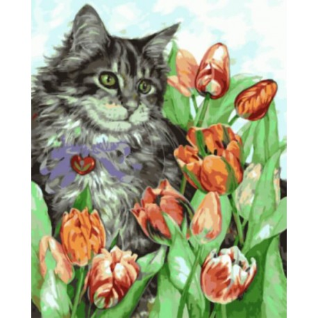 Котик в тюльпанах Раскраска картина по номерам акриловыми красками на холсте   Картина по номерам купить