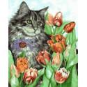 Котик в тюльпанах Раскраска картина по номерам акриловыми красками на холсте