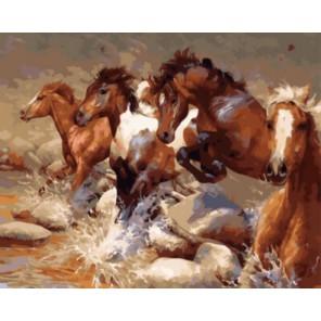Быстрый бег Раскраска картина по номерам акриловыми красками на холсте | Картина по номерам купить