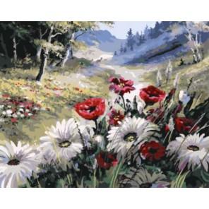 Маки и ромашки Раскраска картина по номерам акриловыми красками на холсте | Картина по номерам купить