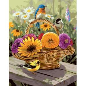 Птички на корзинке Раскраска картина по номерам акриловыми красками на холсте | Картина по номерам купить