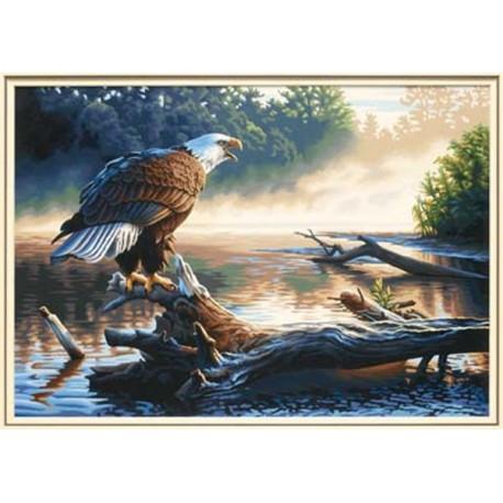 Орел-охотник 91379 Раскраска по номерам Dimensions