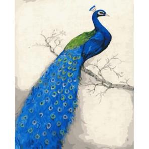 Голубой павлин Раскраска картина по номерам акриловыми красками на холсте   Картина по цифрам купить