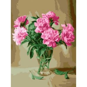 Нежные пионы Раскраска картина по номерам акриловыми красками на холсте | Картина по цифрам купить