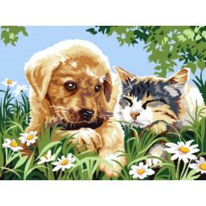 Милые друзья Раскраска картина по номерам акриловыми красками на холсте | Картина по цифрам купить