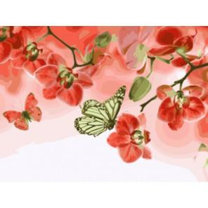 Алые орхидеи Раскраска картина по номерам на холсте