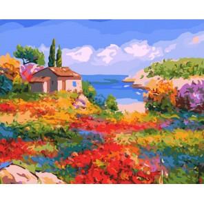 807-AB Солнечный Прованс Раскраска картина по номерам акриловыми красками на холсте Белоснежка