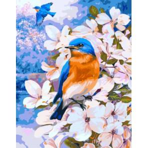 GX8180 Птичка в цветах Раскраска картина по номерам акриловыми красками на холсте