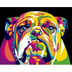 Радужный английский бульдог Раскраска картина по номерам акриловыми красками на холсте Paintboy