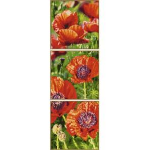Цветущие маки Триптих Раскраска картина по номерам акриловыми красками Schipper (Германия)