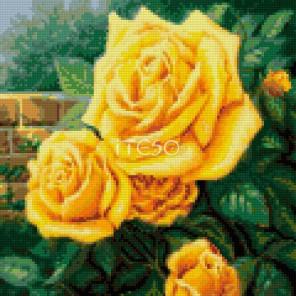 Желтые розы Алмазная мозаика на твердой основе Iteso