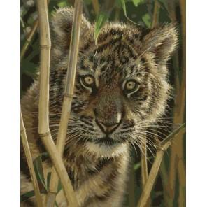 Маленький тигрёнок Раскраска картина по номерам акриловыми красками на холсте Menglei