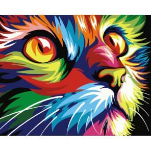 Радужный кот Раскраска картина по номерам акриловыми красками на холсте