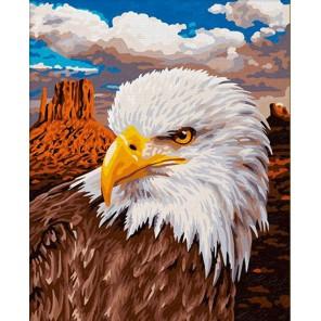 Орлан Раскраска картина по номерам акриловыми красками на холсте Paintboy