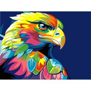 Радужный орел Раскраска картина по номерам акриловыми красками на холсте Paintboy