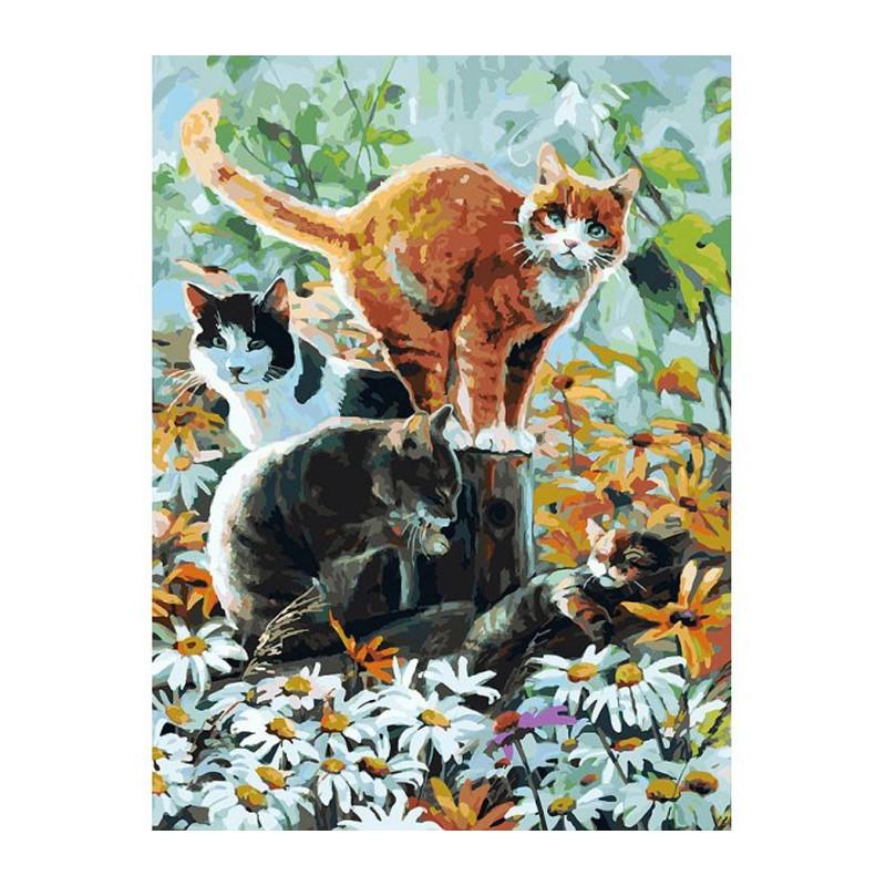 Раскраски по номерам на холсте кошки