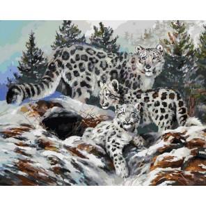 Ирбисы Раскраска картина по номерам акриловыми красками на холсте Белоснежка