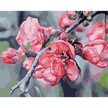 Цветущая ветка Раскраска картина по номерам акриловыми красками на холсте