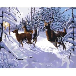 Морозное утро Раскраска картина по номерам акриловыми красками на холсте