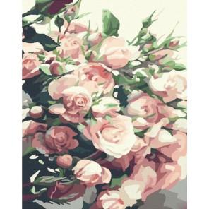Свежие розы Раскраска картина по номерам на холсте Molly