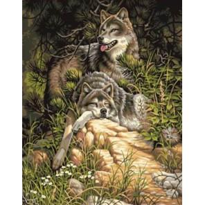 Волки на отдыхе Раскраска картина по номерам акриловыми красками на холсте