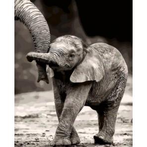 Маленький слоненок Раскраска картина по номерам акриловыми красками на холсте