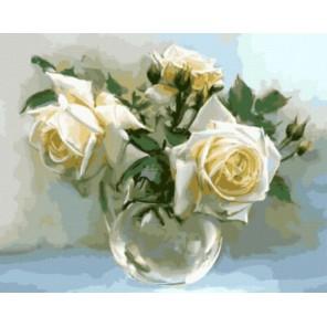 Садовые розы Раскраска картина по номерам акриловыми красками на холсте