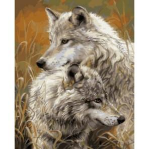 Степные волки Раскраска картина по номерам акриловыми красками на холсте