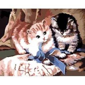 Игра котят Алмазная частичная мозаика стразами на подрамнике Color Kit