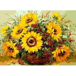 Солнечные цветы Раскраска картина по номерам акриловыми красками на холсте Menglei