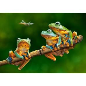 Лягушки Пазлы Castorland
