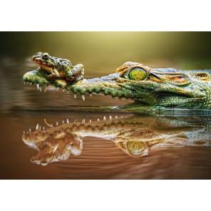 Крокодил и лягушка Пазлы Castorland