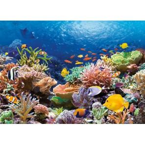 Коралловый риф Пазлы Castorland